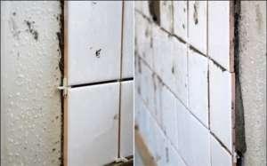 德高瓷砖胶好不好  铺贴瓷砖好伴侣资讯生活